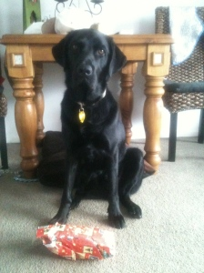 Wiley with one of his Christmas Gifts