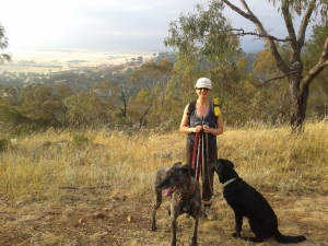 Photo of Jo, Wiley and Haggis on Mount Majura