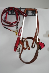 Photo of Wiley's recreational lead and working lead and harness hanging on hooks in the lounge room